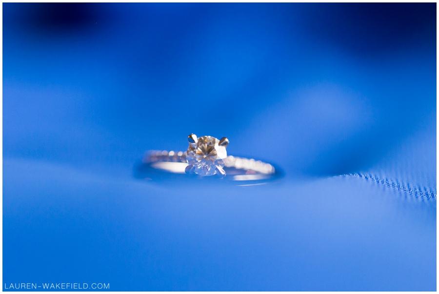 chicago wedding photographer, indianapolis wedding photographer, wedding photogrpahy, chicago photographer_0003